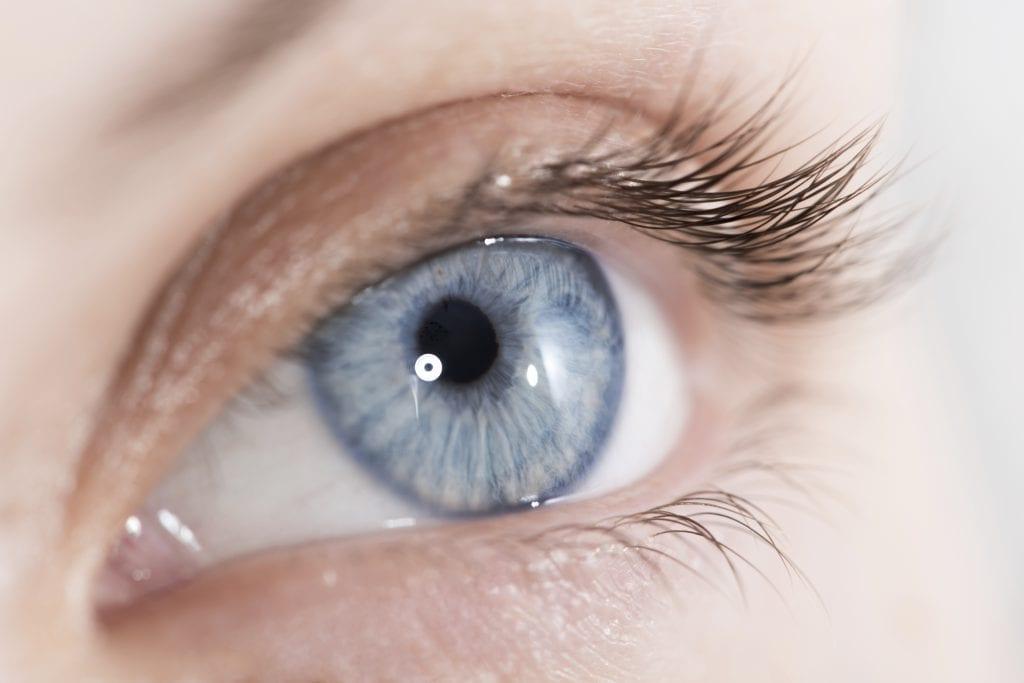 Closeup shot of a beautiful woman eye